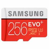 Samsung 256 GB microSDXC Class 10 UHS-I U3 EVO Plus + SD Adapter MB-MC256DA - фото 1