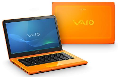 Ноутбук Sony VAIO VPC-CA1S1R